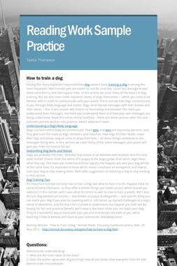 Reading Work Sample Practice