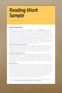 Reading Work Sample