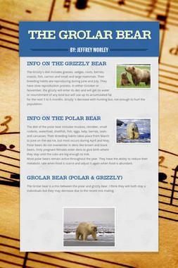 The Grolar bear