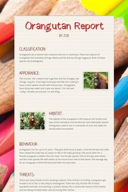 Orangutan Report
