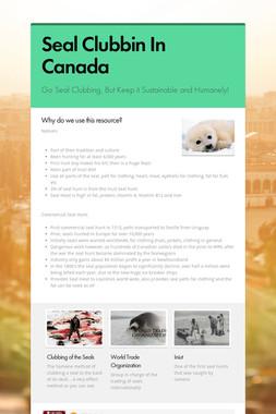 Seal Clubbin In Canada