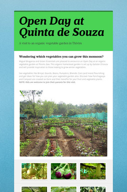 Open Day at Quinta de Souza
