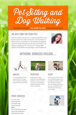 Pet Sitting and Dog Walking