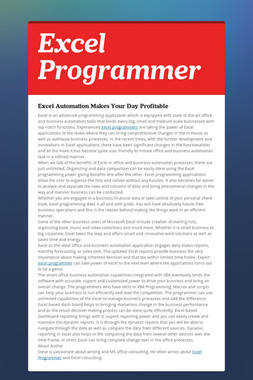 Excel Programmer