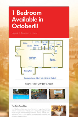 1 Bedroom Available in October!!!
