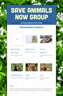 Save animals now group
