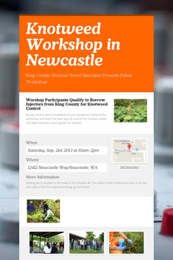 Knotweed Workshop in Newcastle