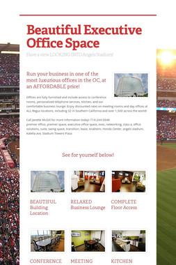 Beautiful Executive Office Space