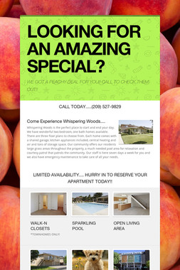 LOOKING FOR AN AMAZING SPECIAL?