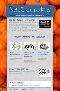 NetLZ Consulting