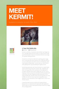 MEET KERMIT!