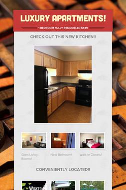 Luxury Apartments!