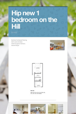 Hip new 1 bedroom on the Hill
