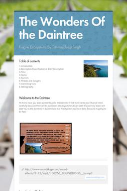 The Wonders Of the Daintree