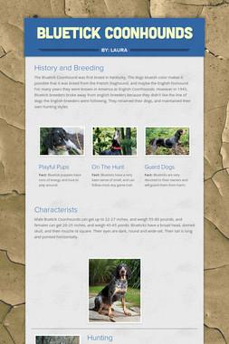 Bluetick Coonhounds