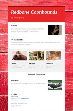 Redbone Coonhounds