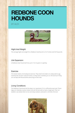 REDBONE COON HOUNDS