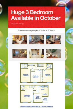 Huge 3 Bedroom Available in October