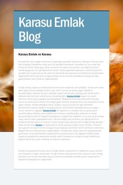 Karasu Emlak Blog