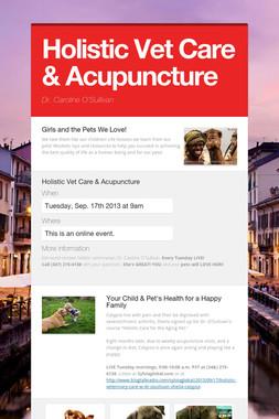 Holistic Vet Care & Acupuncture