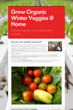 Grow Organic Winter Veggies @ Home