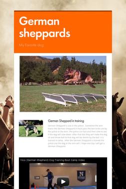 German sheppards
