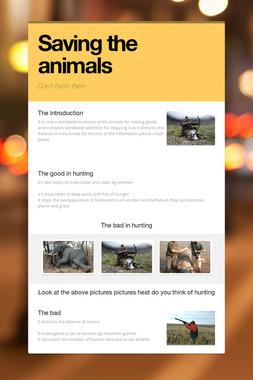 Saving the animals