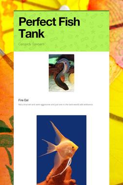 Perfect Fish Tank