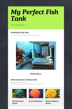 My Perfect Fish Tank
