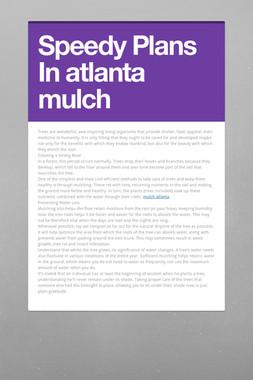 Speedy Plans In atlanta mulch