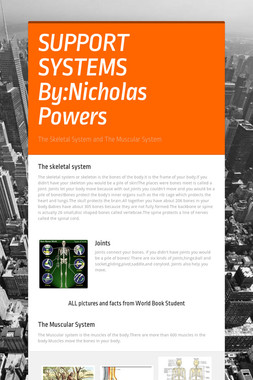SUPPORT SYSTEMS By:Nicholas Powers