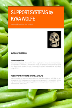 SUPPORT SYSTEMS  by KYRA WOLFE