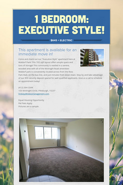 1 Bedroom: Executive Style!