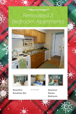 Renovated 2 Bedroom Apartments