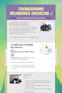 Cronograma REUNIONES AIESECas :)