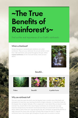 ~The True Benefits of Rainforest's~