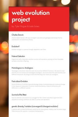 web evolution project