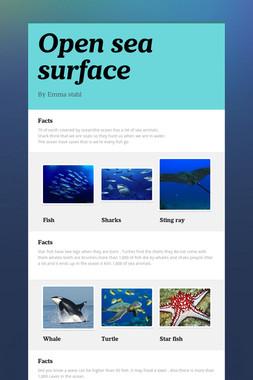 Open sea surface