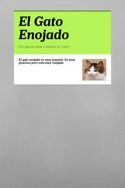 El Gato Enojado