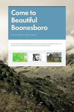 Come to Beautiful Boonesboro