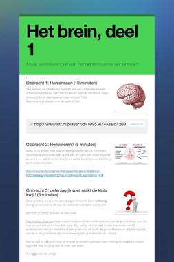Het brein, deel 1
