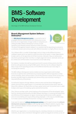 BMS - Software Development