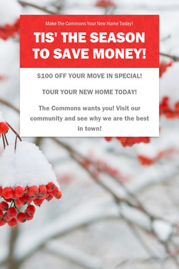 Tis' The Season To Save Money!