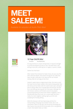 MEET SALEEM!