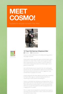 MEET COSMO!