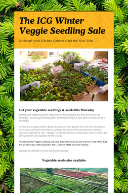 The ICG Winter Veggie Seedling Sale