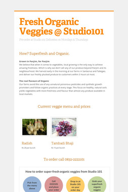 Fresh Organic Veggies @ Studio101