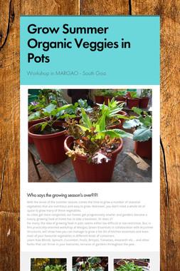 Grow Summer Organic Veggies in Pots