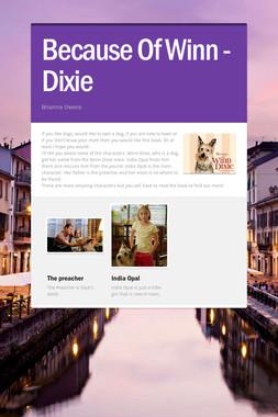 Because Of Winn - Dixie
