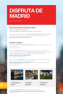 DISFRUTA DE MADRID
